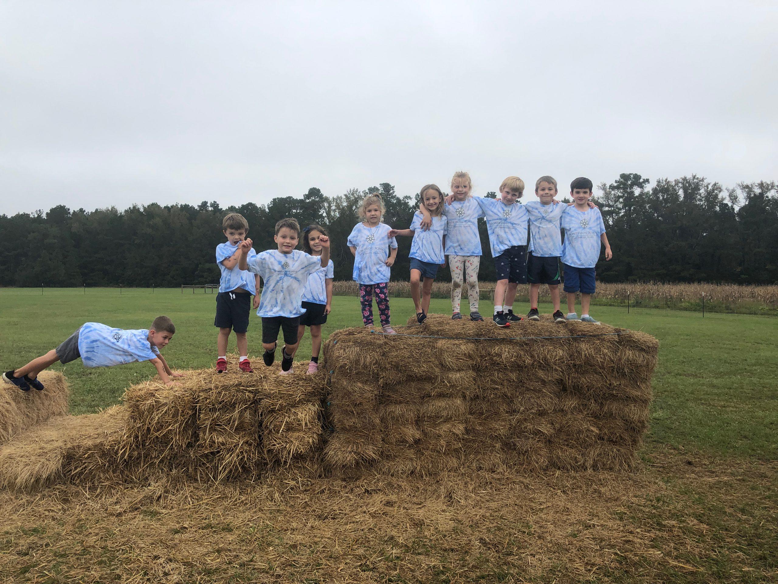 Kindergarteners enjoy a field trip to a working farm